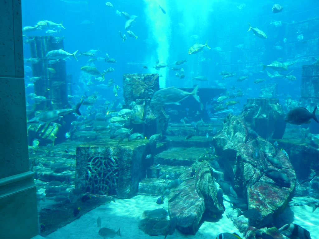 Dubai Part 2 Underwater City Lost City Of Atlantis Underwater Ruins