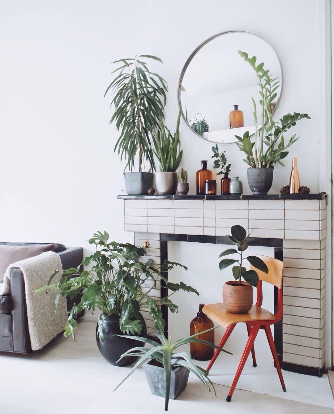 Plants In My Livingroom Room Huis Interieur Woonideeën