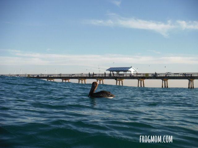 Outdoor Activities in South Florida - Snorkeling
