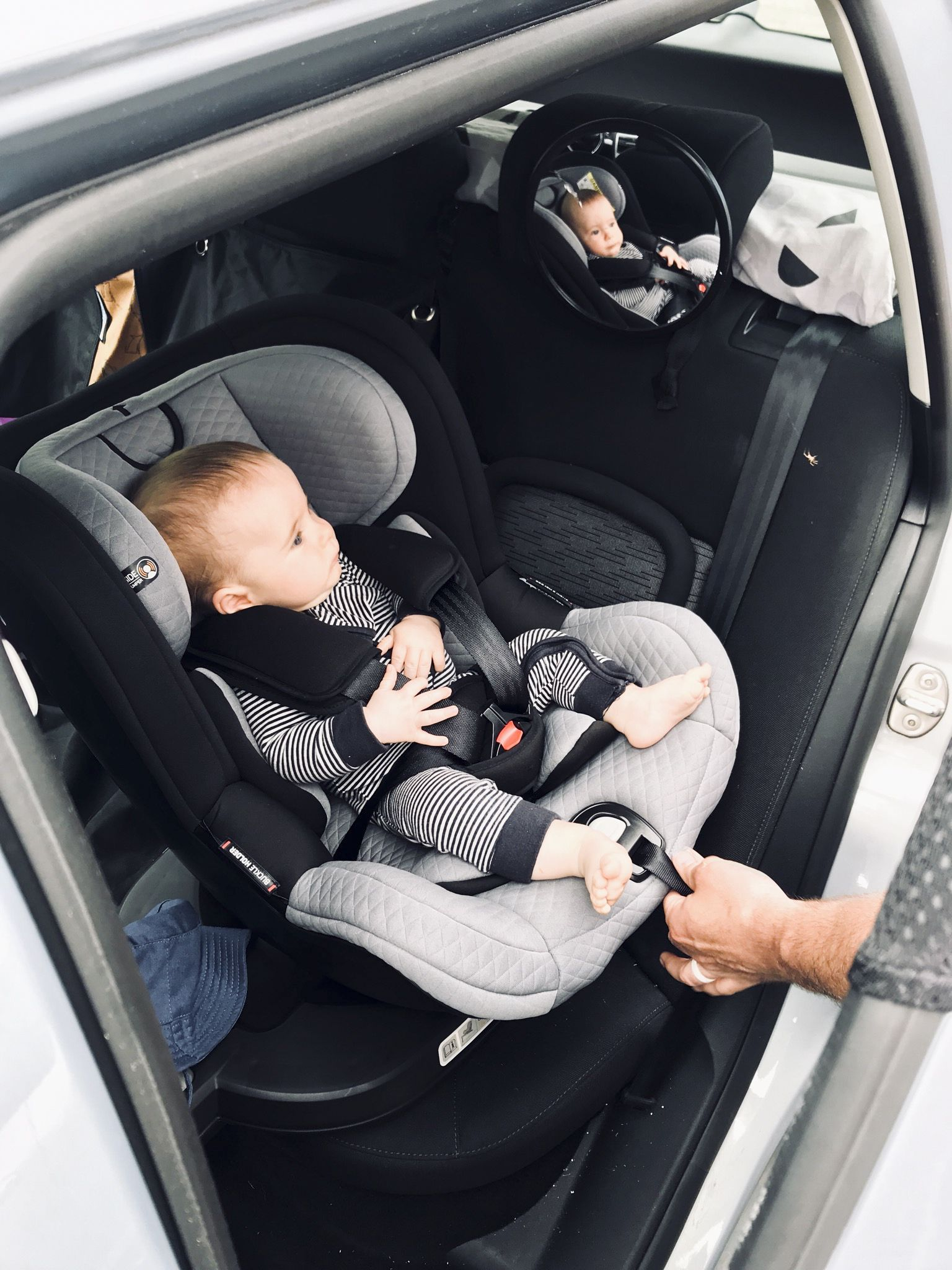 Mountain Buggy Car Seat Installation Review Mountain Buggy Safe Rotate Convertible Car Seat