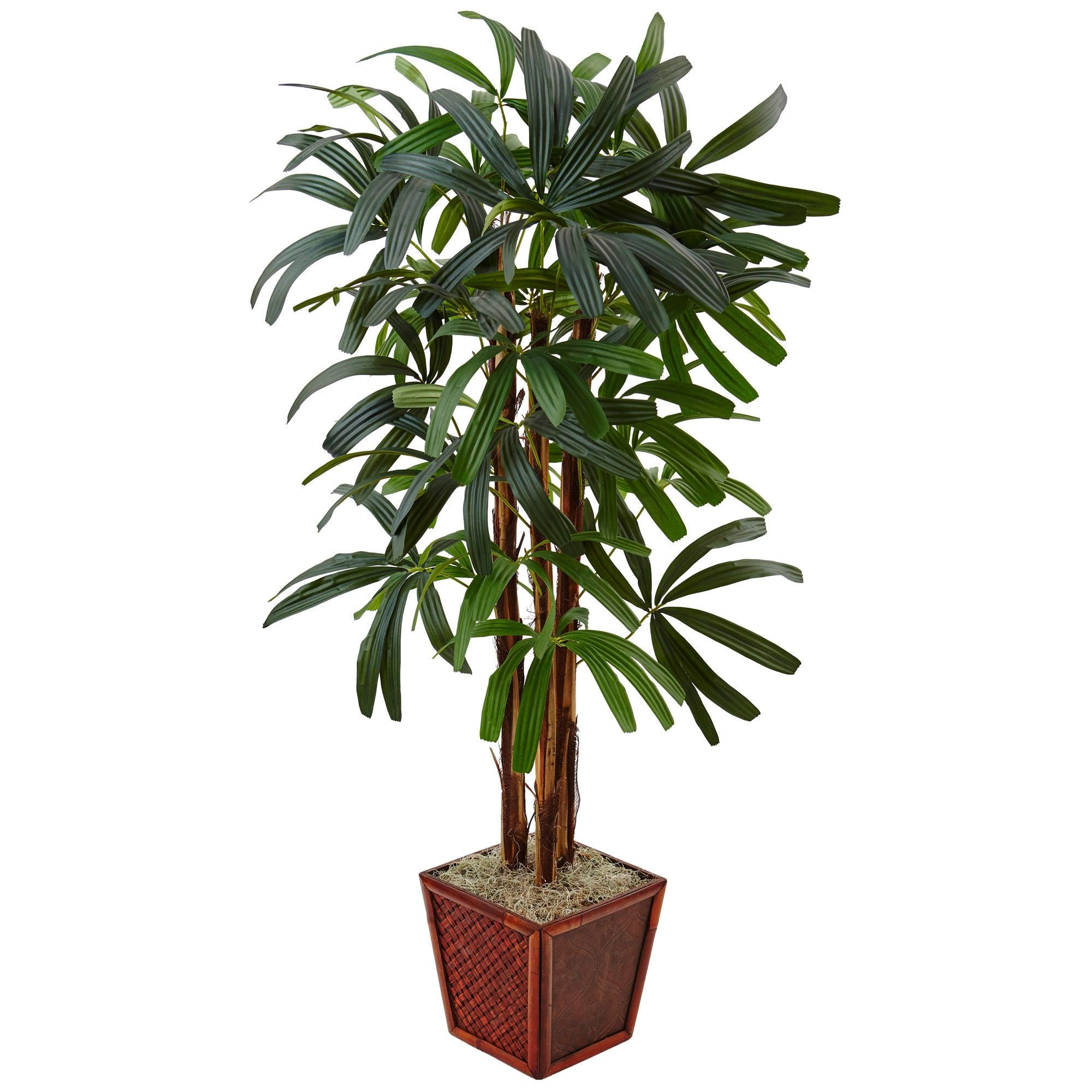 Nearly natural foot raphis palm tree in bamboo green planter