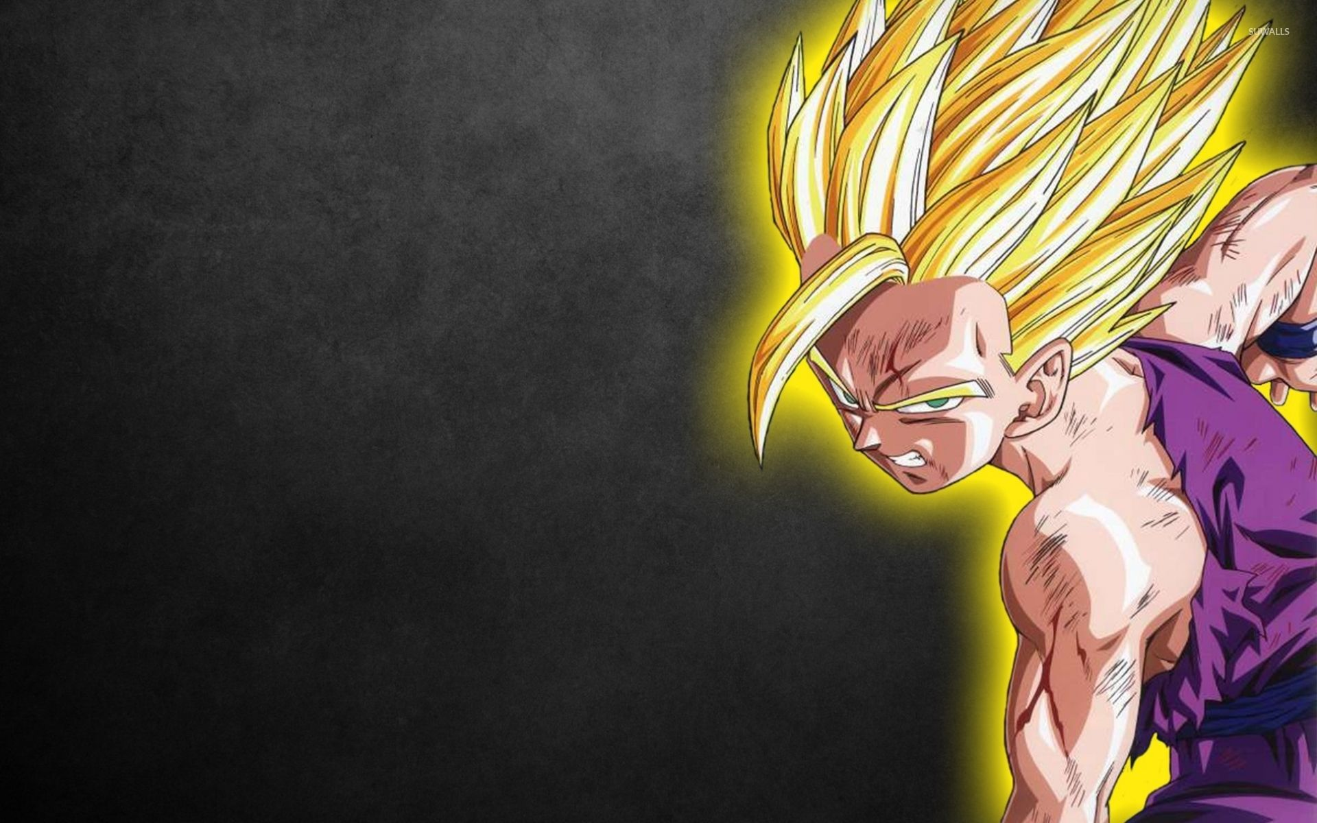 Desktop of Dragon Ball Z Wallpapers for free