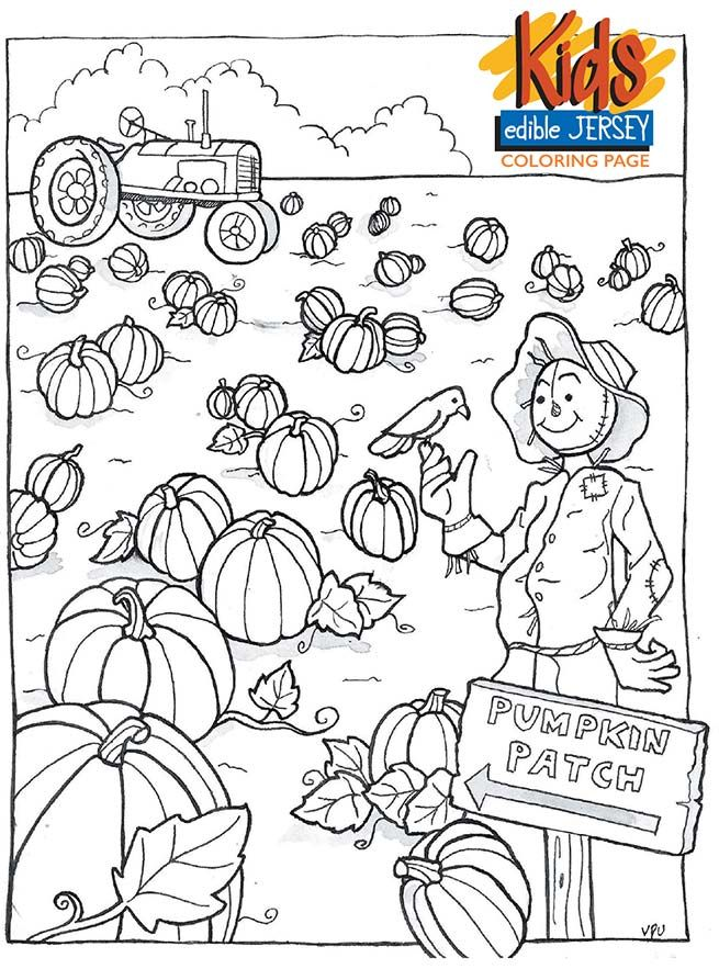 Edible Jersey Kids Coloring Page Pumpkin Patch Pumpkin Coloring