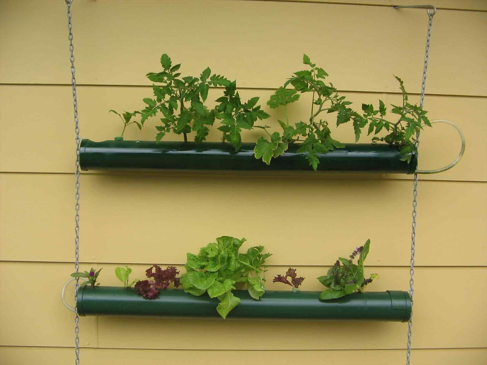 Gorgeous and Stunning Wall Mounted Planters Outdoor Ideas | Wall ...