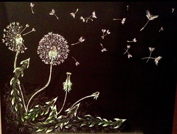Dandelions. Scratchboard. 11x16. Not for sale. 2013.