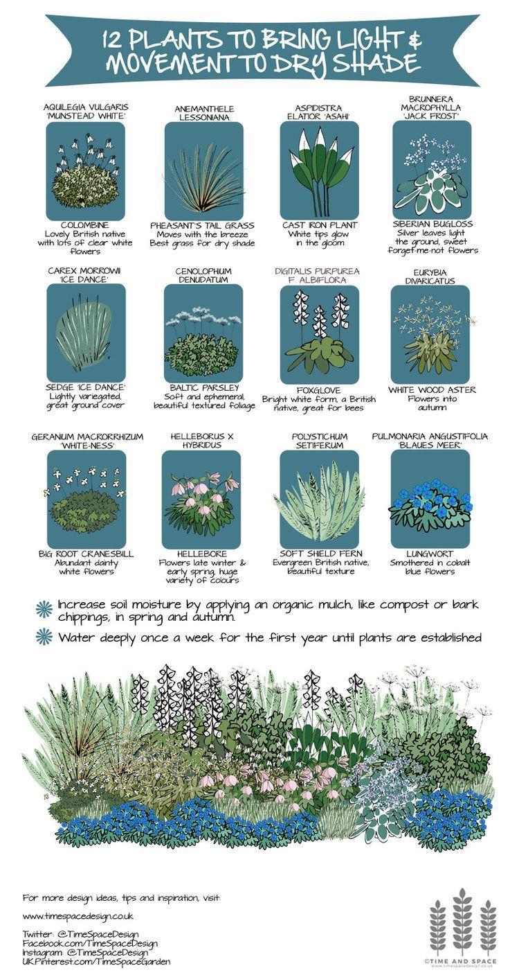 Easy Garden Design Ideas You Can Do Yourself Shade Garden Plants