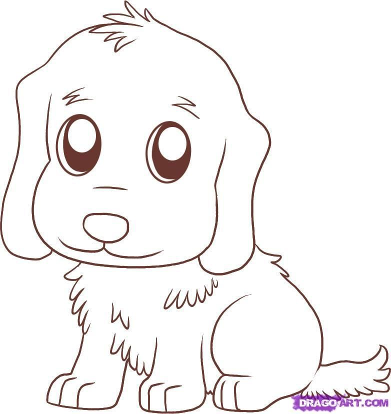 how to draw a golden retriever puppy hundreds of drawing tuts on this site