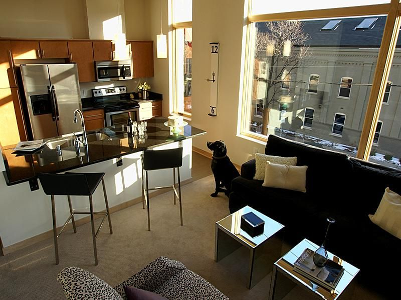 This Bright 3 Bedroom Den In Bucktown Has A Gorgeous Kitchen In Unit Laundry And A First Rate L Vintage Apartment Decor Chicago Apartment Vintage Apartment