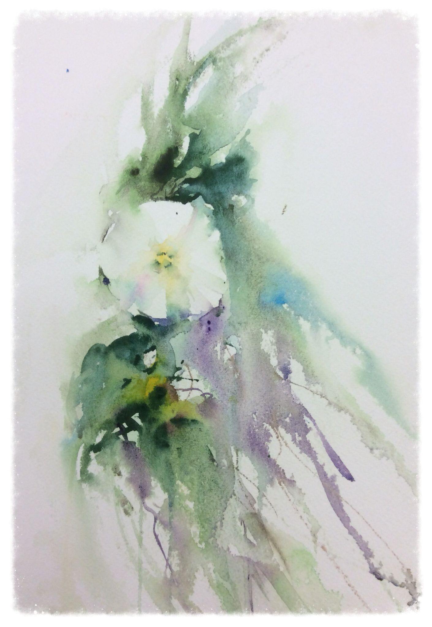 Fleur Blanche Aquarelle Fleurs Aquarelle Fleurs Blanches