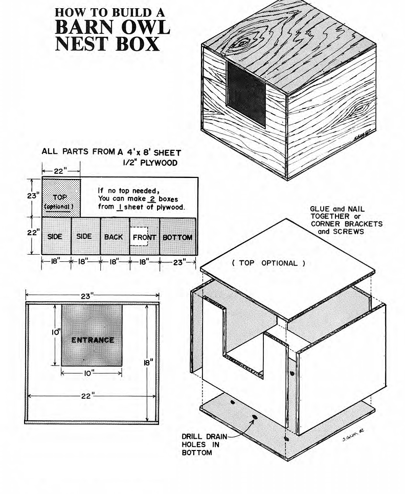 Simple barn owl box plans for Simple barn home plans