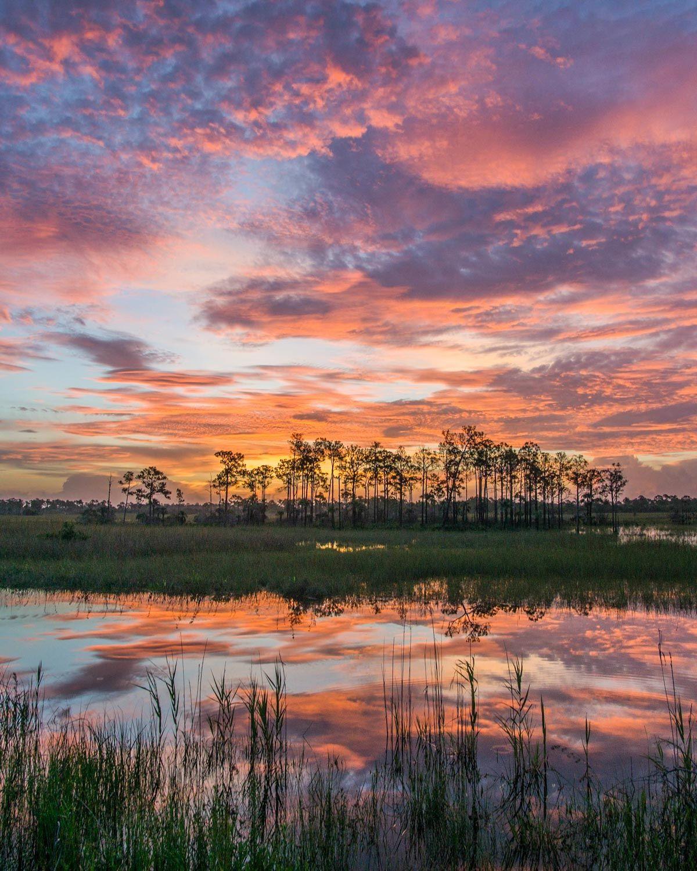 National Parks Near Miami Florida Sunrise Landscape Iphone Wallpaper Landscape Sunrise Photography