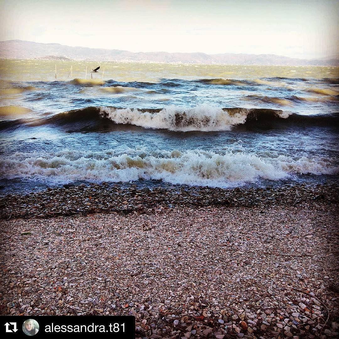 #Repost @alessandra.t81  #lagotrasimeno #lagomosso #trasimenolake #acqua #onde #spiaggia #sassi #water #beach #castiglionedellago #borghiditalia #volgoumbria_ #umbriagram #igersitalia #igers #igersumbria #perugia #italia #italy #instaplace #instamoment #vento #wind
