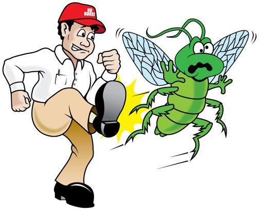 Alkanz Alzahabi provides supremely trusted Pest Control