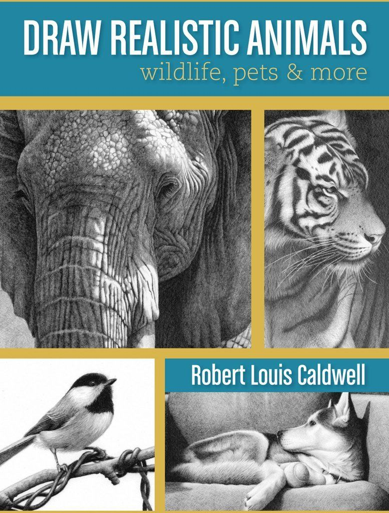 Draw realistic animals wildlife pets and more pdf