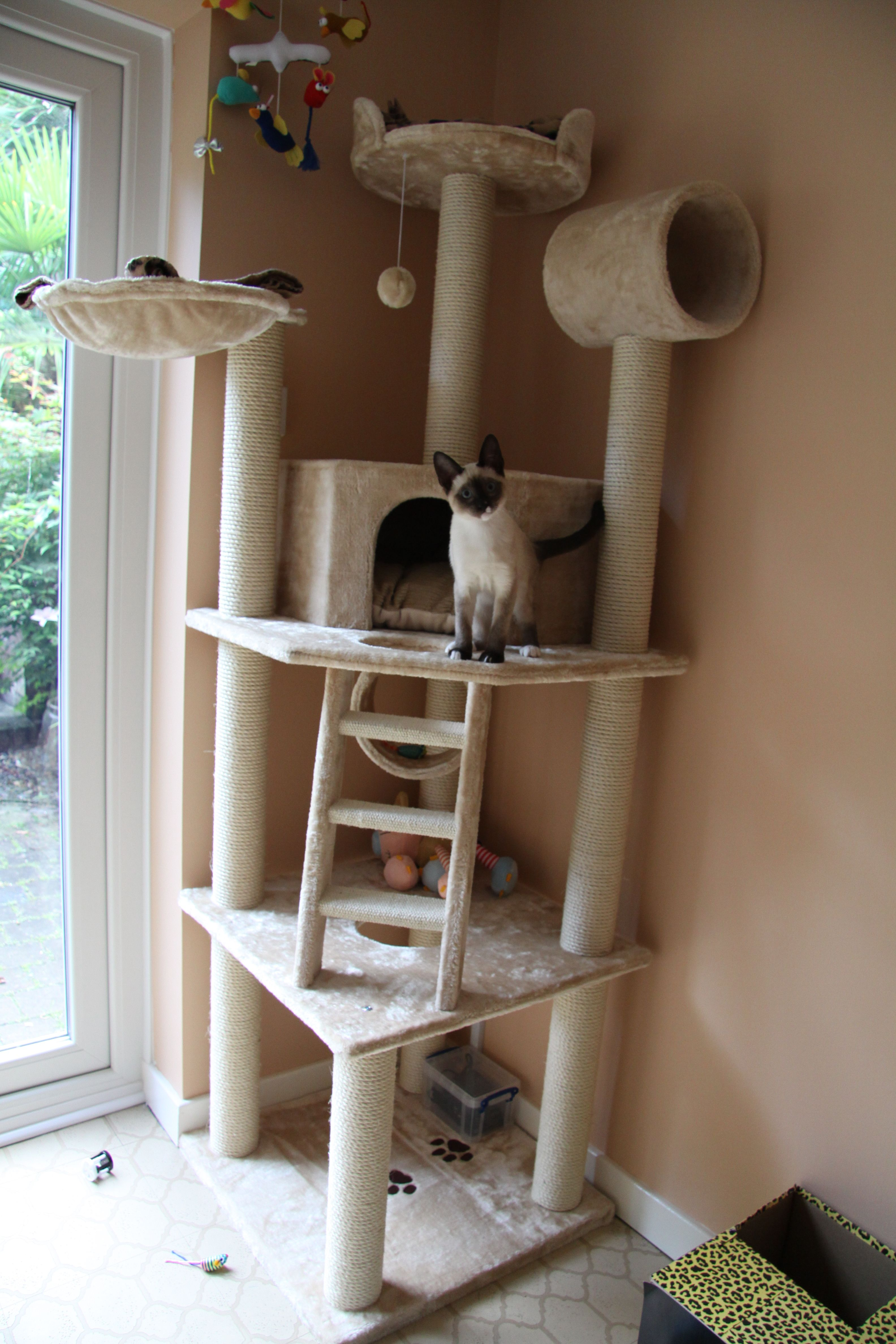 with hole catastrophic maze cat tree fabric right hammock product creations to