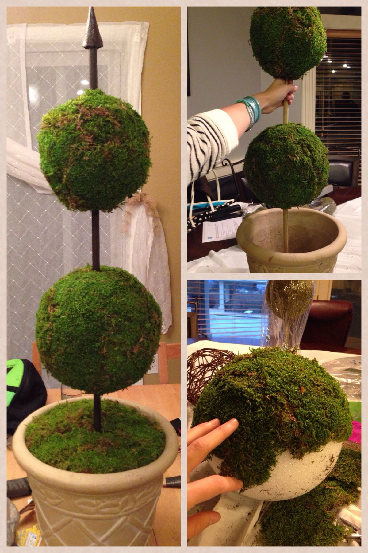 10 Ways To Decorate With Green Moss: Diy Topiary!! I Totally Made This! Moss Topiary Diy