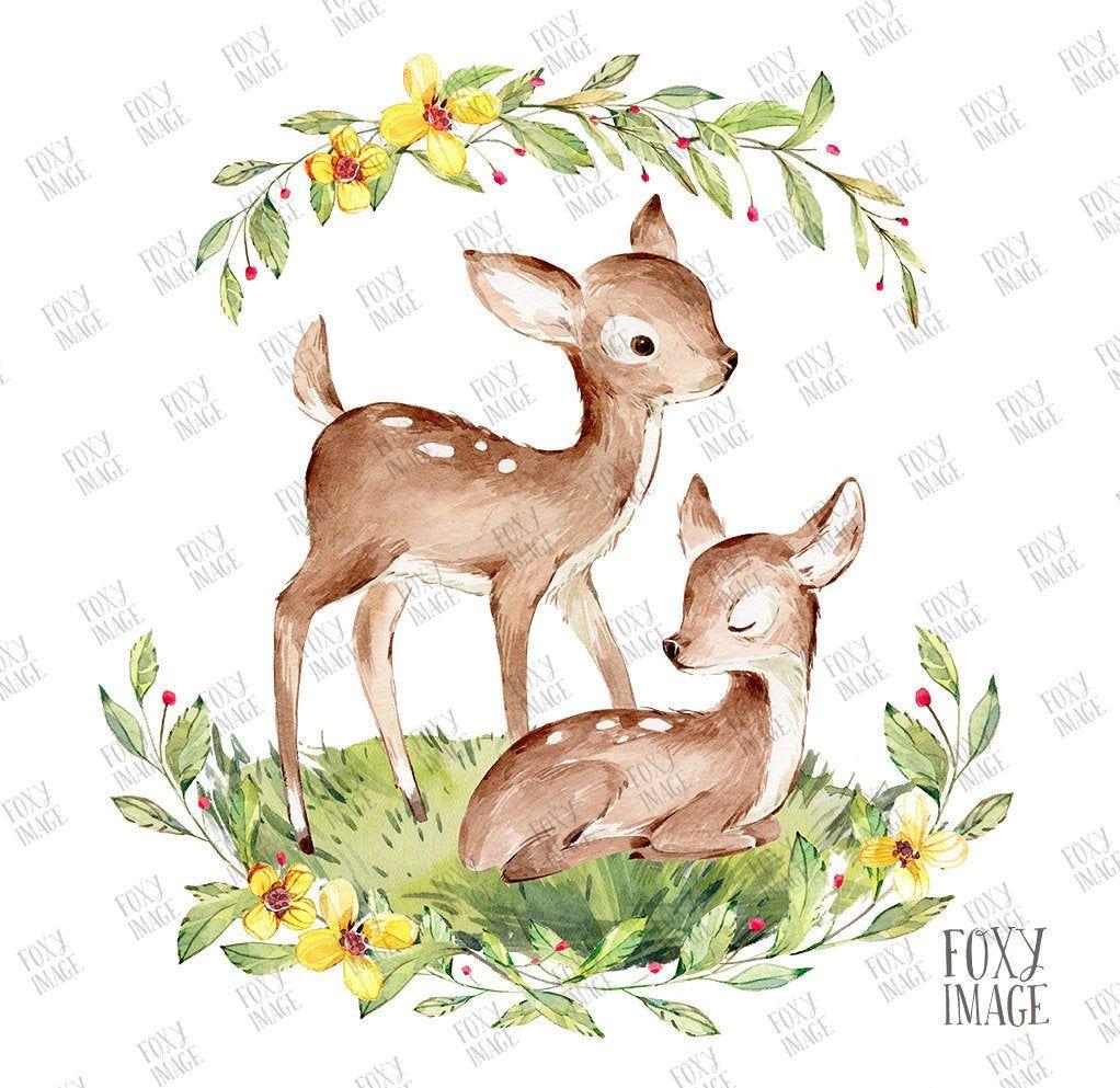 Watercolour Png Baby Deer Sleeping Baby Deer Flower Wreath Baby Deer Deer Print Art Deer Deer Illustration Siblings Cute Little Fawn In 2021 Baby Deer Art Deer Illustration Deer Sketch