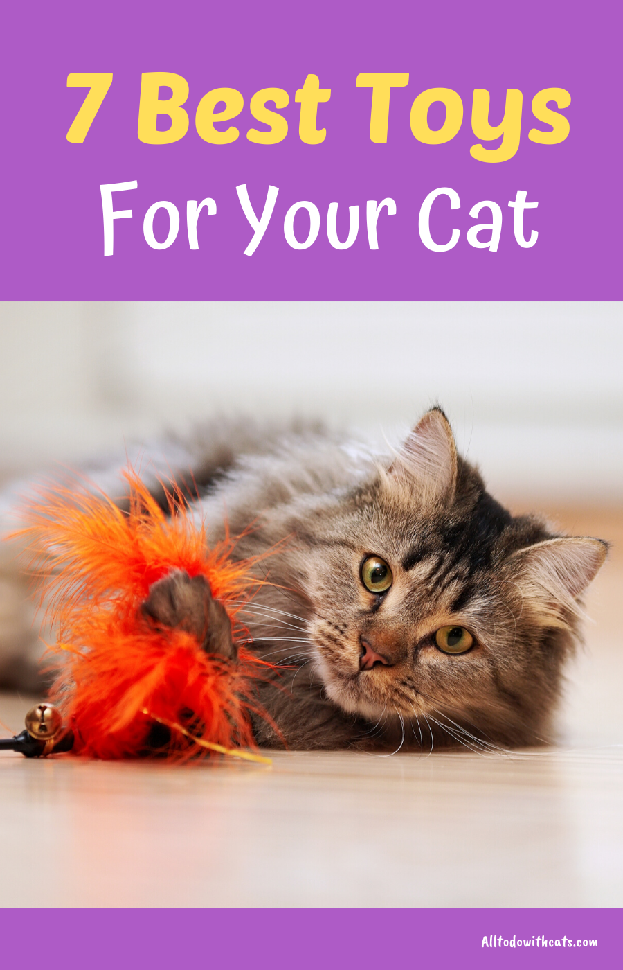 7 Best Cat Toys For Indoor Cats To Keep Your Kitty Active Indoor Cat Cat Toys Cool Cats