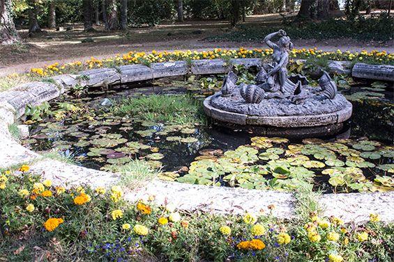 Escapada desde Madrid: La Granja de San Ildefonso.  Versalles es mundialmente conocido, pero el Palacio Real y los Jardines de La Granja de San Ildefonso no le tienen nada que envidiar. Desde Madrid se puede hacer una escapada de un día y disfrutar de este Patrimonio Nacional a sólo una hora de la capital.