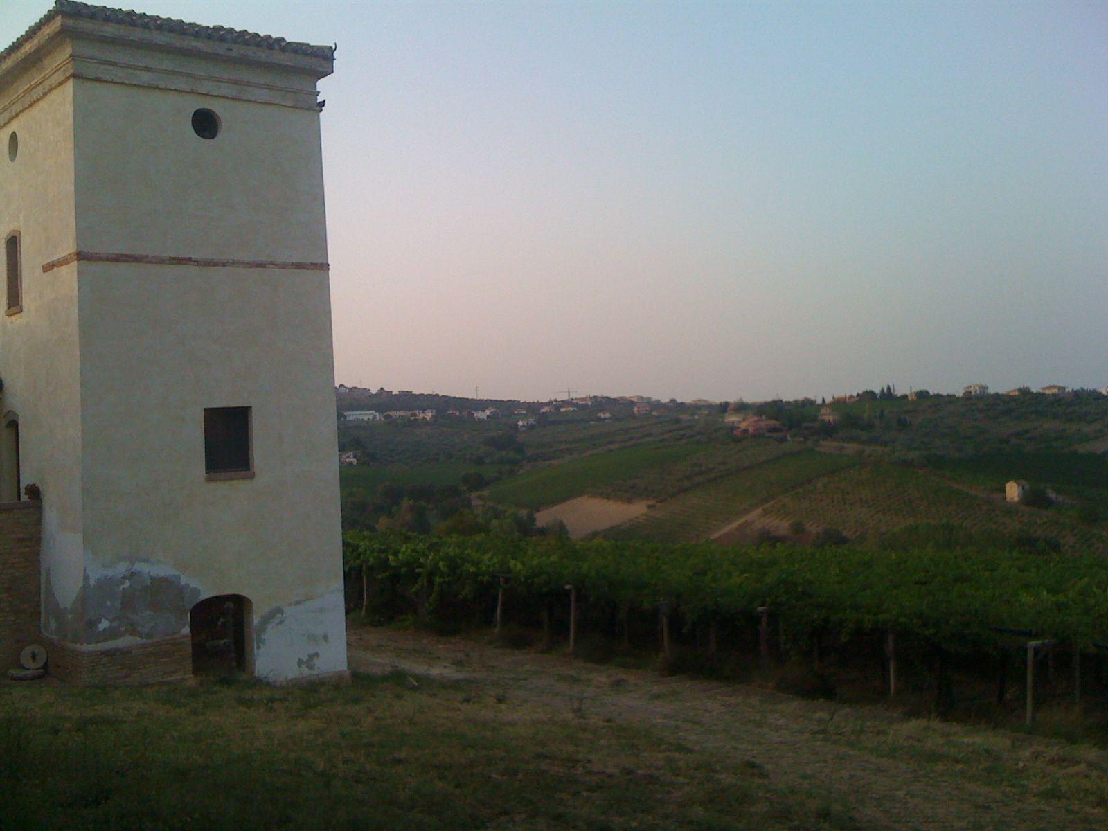 Torre Manella