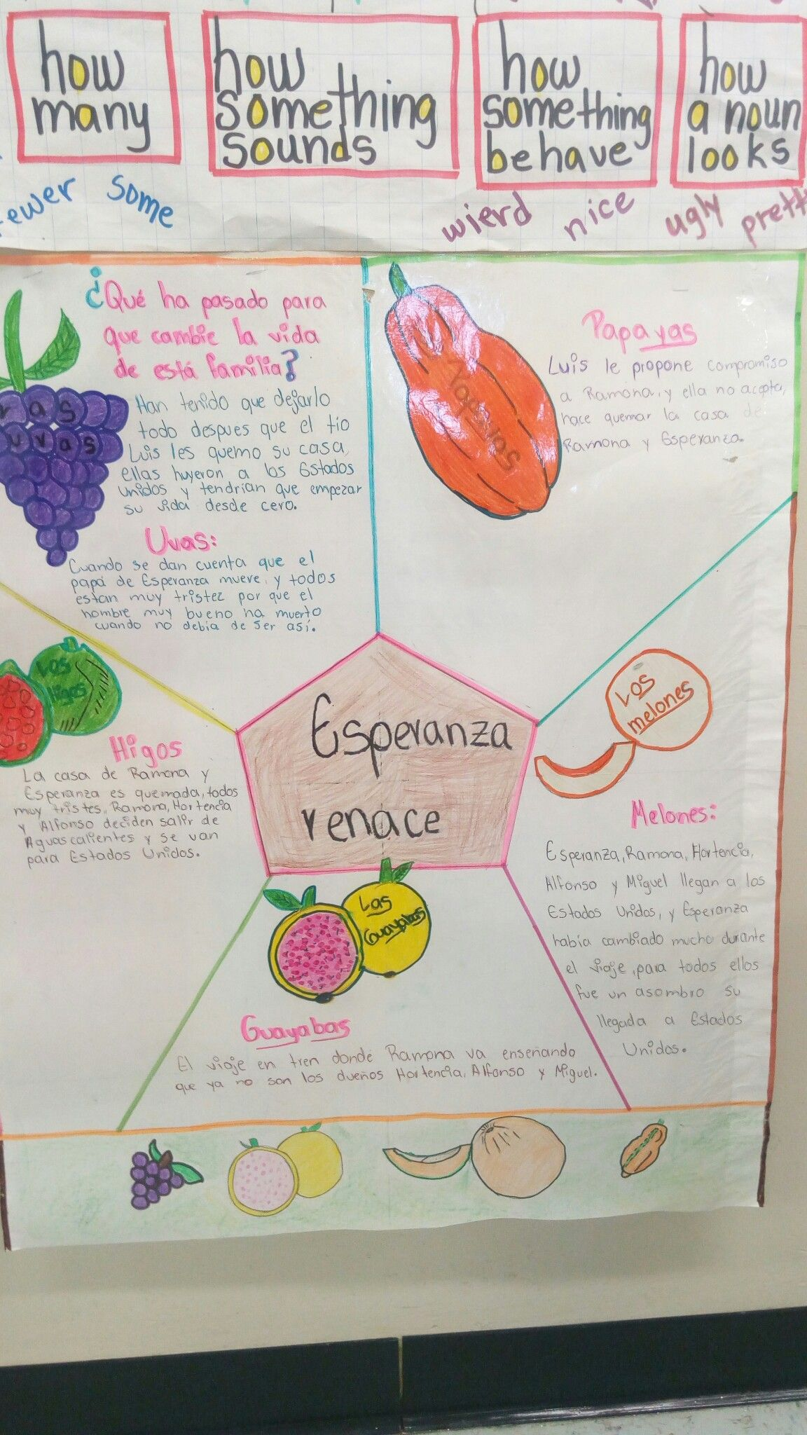 Esperaza Renace Mrs Lagares Class Activity What Are The