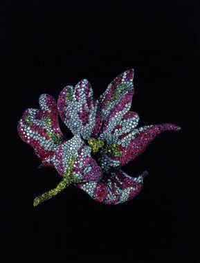 Parrot Tulip Brooch, Joel Arthur Rosenthal. JAR Paris