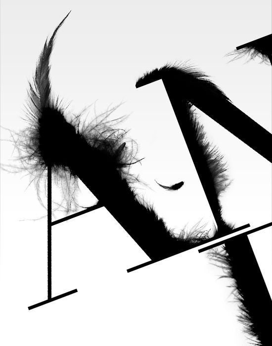 feather type in black | typography / graphic design: Craig Ward |