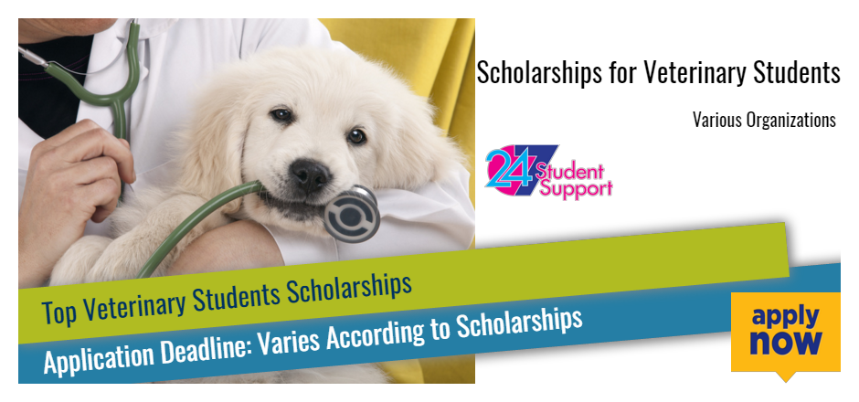 Veterinary Students Passionate About Animal Advocacy And They Can Earn Funds To Pay For Their Studie Scholarships Student Scholarships Scholarships For College