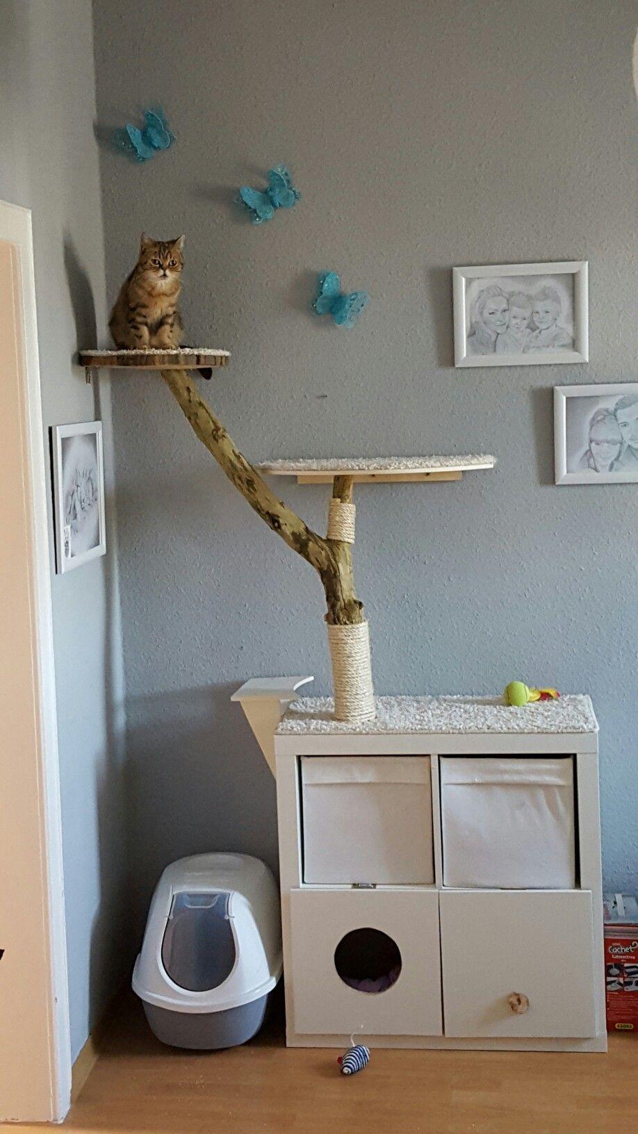 katzen kratzbaum diy selfmade pinterest katzen katzen zubeh r und katzen haus. Black Bedroom Furniture Sets. Home Design Ideas