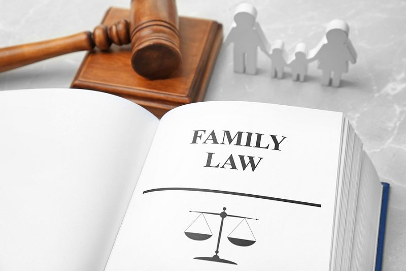 5 Best Family Lawyers In Adelaide Top Rated Family Lawyers Family Law Lawyer Family Law Mediation