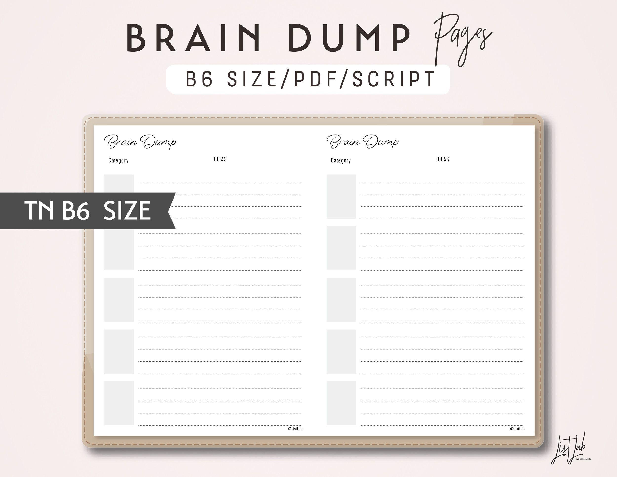 B6 Tn Brain Dump