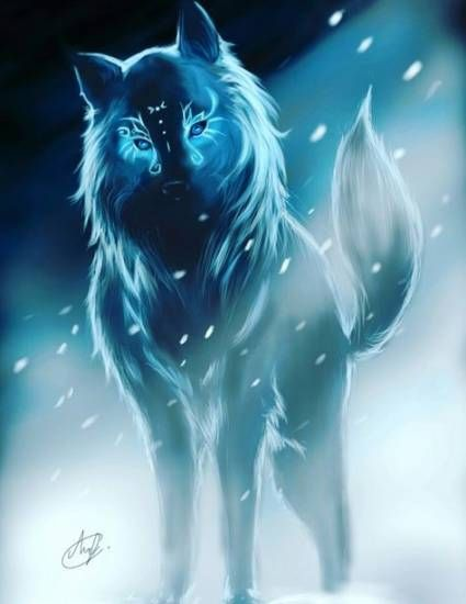 Photo of 55+ Trendy Drawing Anime Wolf Spirit Animal