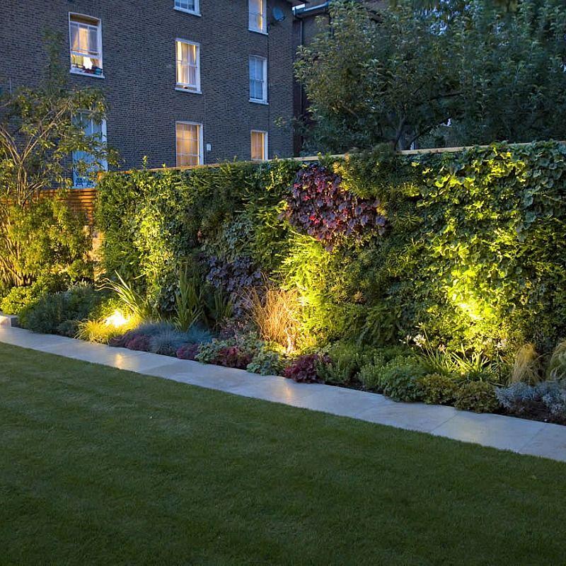 Contemporary Family Garden St Johns Wood Small Garden Landscape Vertical Garden Garden Hedges