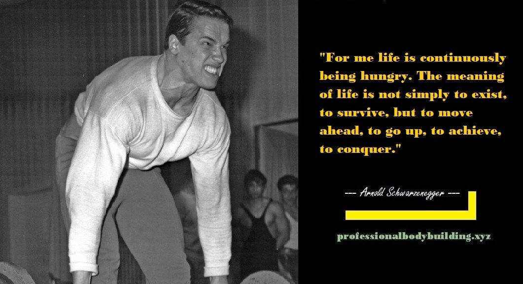 Arnold Schwarzenegger Quote For Me Life Is Continuously Being Hungry The Meaning Of Life I Arnold Schwarzenegger Quotes Arnold Schwarzenegger Schwarzenegger