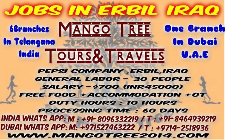 Iraq jobs | Mango tree group of company now 6 branches in