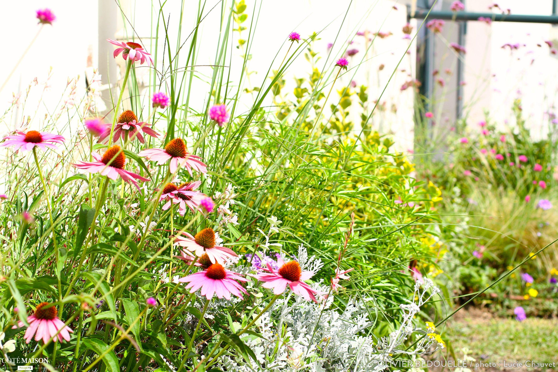 Jardin avec massifs fleuris des jardins comme la for Deco jardin fleuri