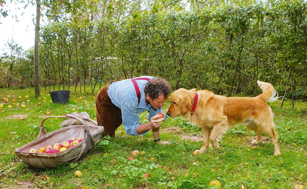 Monty Don Feared The Worst When His Beloved Retriever Nigel Was
