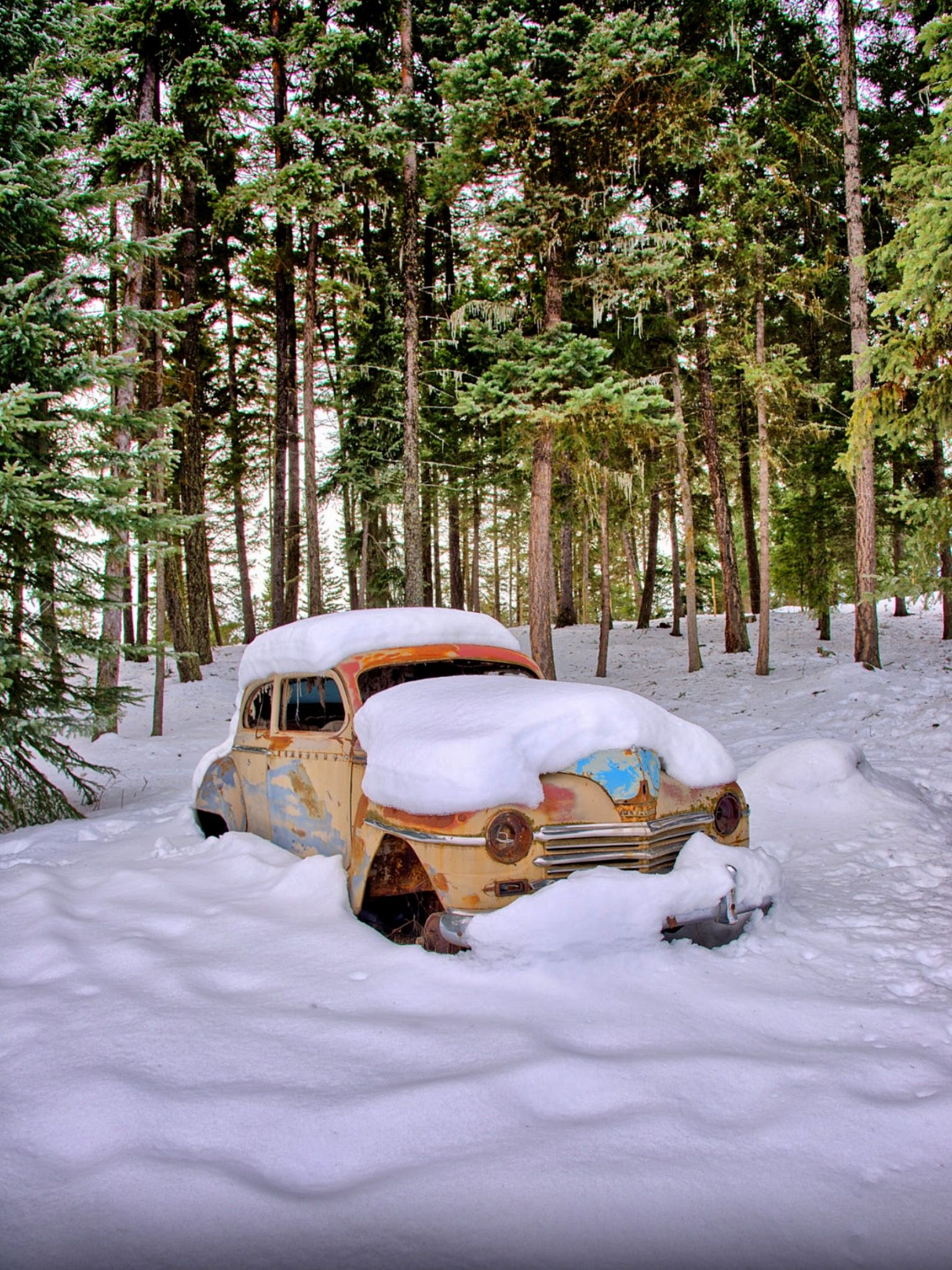 Abandoned vehicle An old car covered with snow in Kamloops, British ...