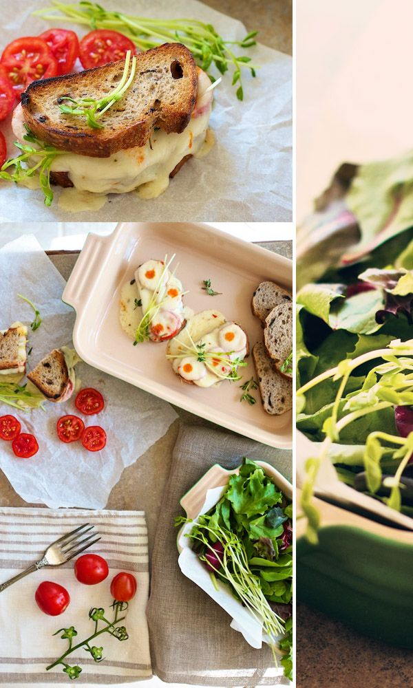 Gourmet Grilled Cheese Recipe: Marinated Mozzarella  Tomatoes on FamilyFreshCooking.com ©Marla Meridith #projectlunchbox