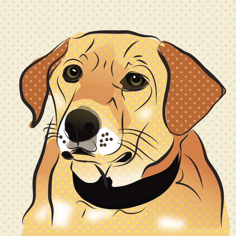 Zoe The Dog. Illustration Of Abandoned Dog. Illustrated