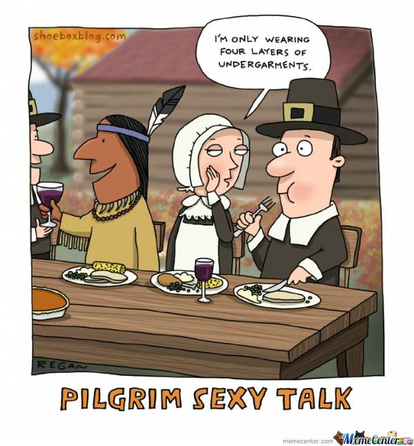 65bd06212b1af726a4a3115b079173a1 thanksgiving meme 012 pilgrim sexy talk thanksgiving pinterest