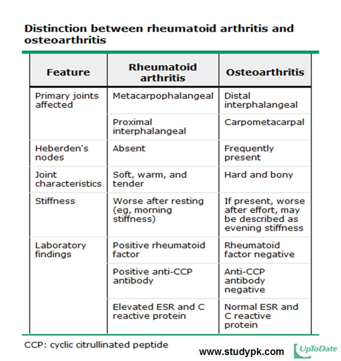14++ Whats the difference between osteoporosis and osteoarthritis viral