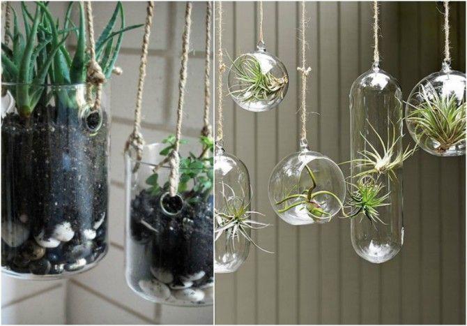 Vidrio para plantas peru buscar con google macetero - Sillas colgantes del techo ...
