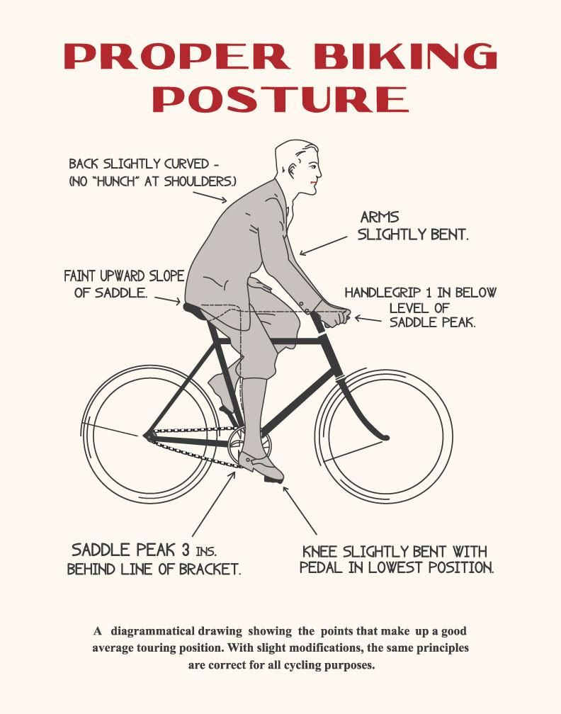 Proper Biking Posture Print Cycling Motivation Quotes Bike