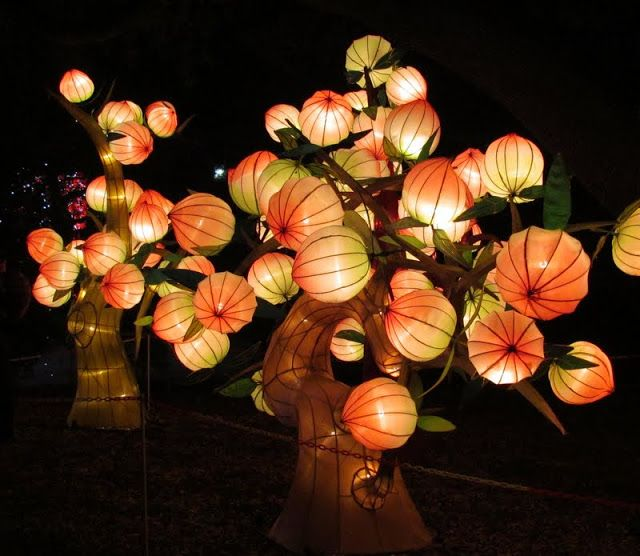 tree lantern fire pinterest tree lanterns chinese lantern