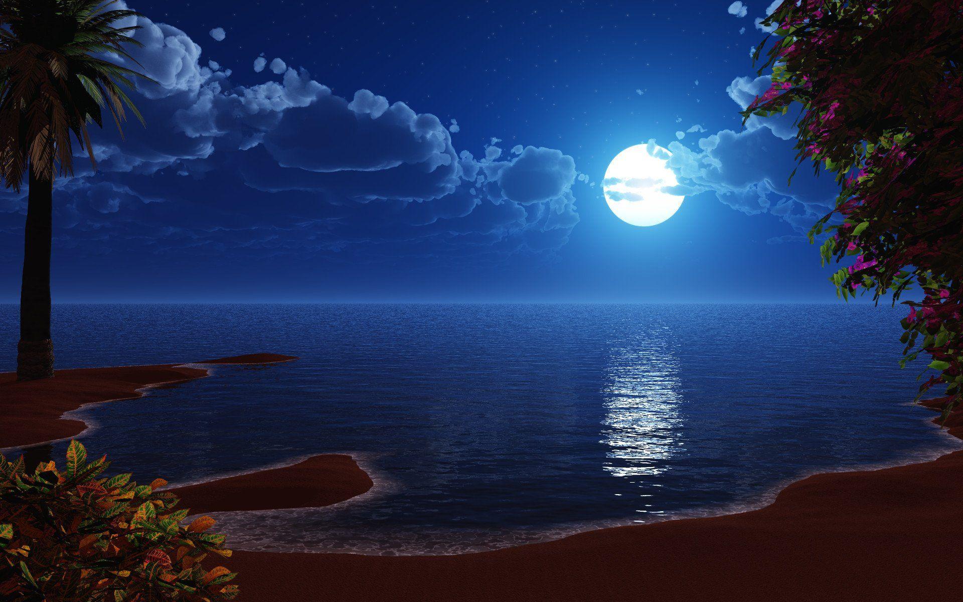 Beauty Of Moon High Definition Wallpaper Ocean At Night Beach At Night Beach Night