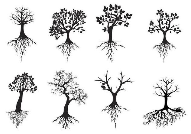 Pin By Kristine Roberge On Tattoo Tree Roots Tattoo Roots Tattoo Tree Silhouette Tattoo