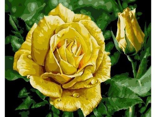 Картина по номерам «Желтая роза»   Декор стены с картинами ...