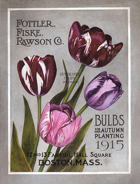 Vintage Fottler - Fiske - Rawson Co - Bulbs for Autumn Planting Catalogue - 1915