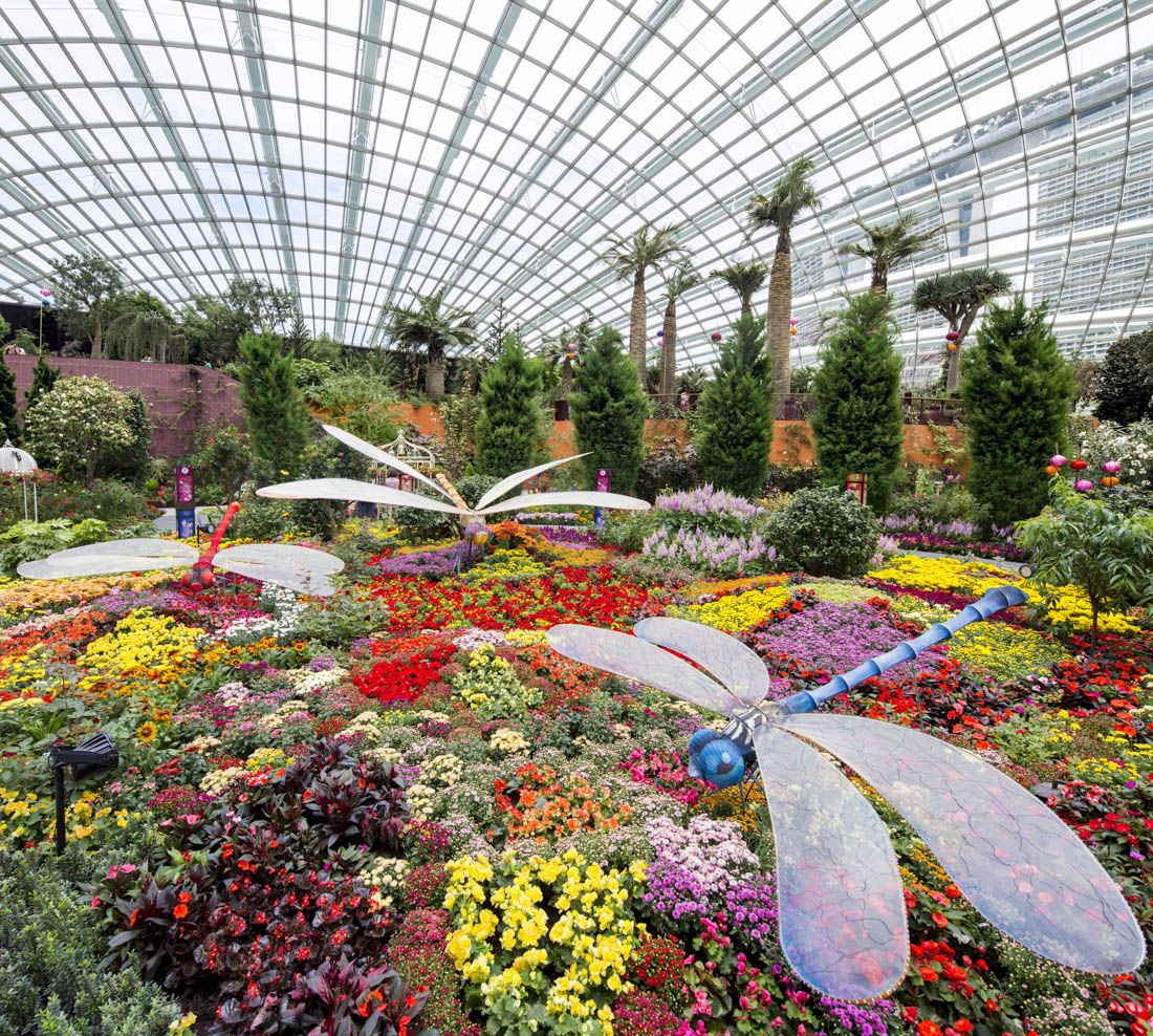 Flower Dome Singapore garden, Garden visits